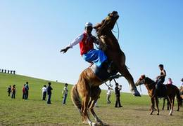 甘肅臨夏:馬術成為助力鄉村振興新産業