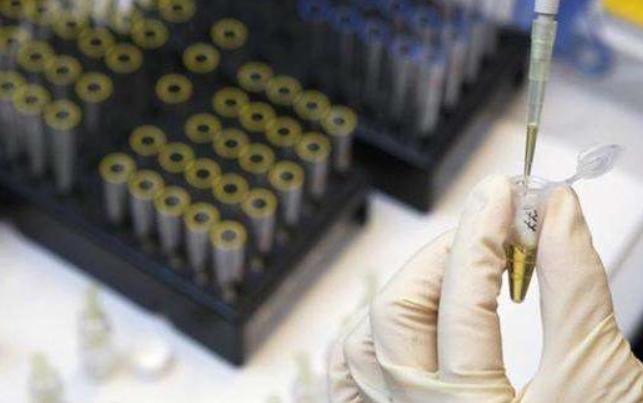 世界反興奮劑機構稱對俄羅斯解禁收到成效