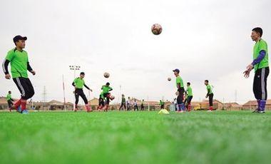 專訪青少年體育俱樂部分會會長:初見成效,還需努力